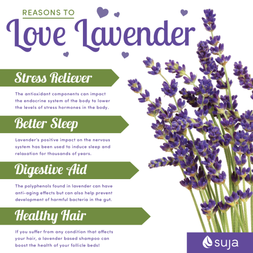 Suja Juice Reasons to Love Lavender